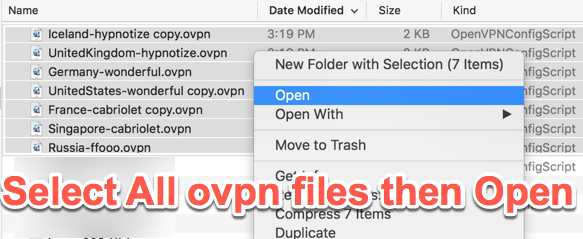 Manual Configuration For MacOS With OpenVPN | FoxyProxy Help