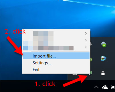 Manual Setup for Windows (OpenVPN)   FoxyProxy Help